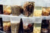 Seafood for sale in plastic cups