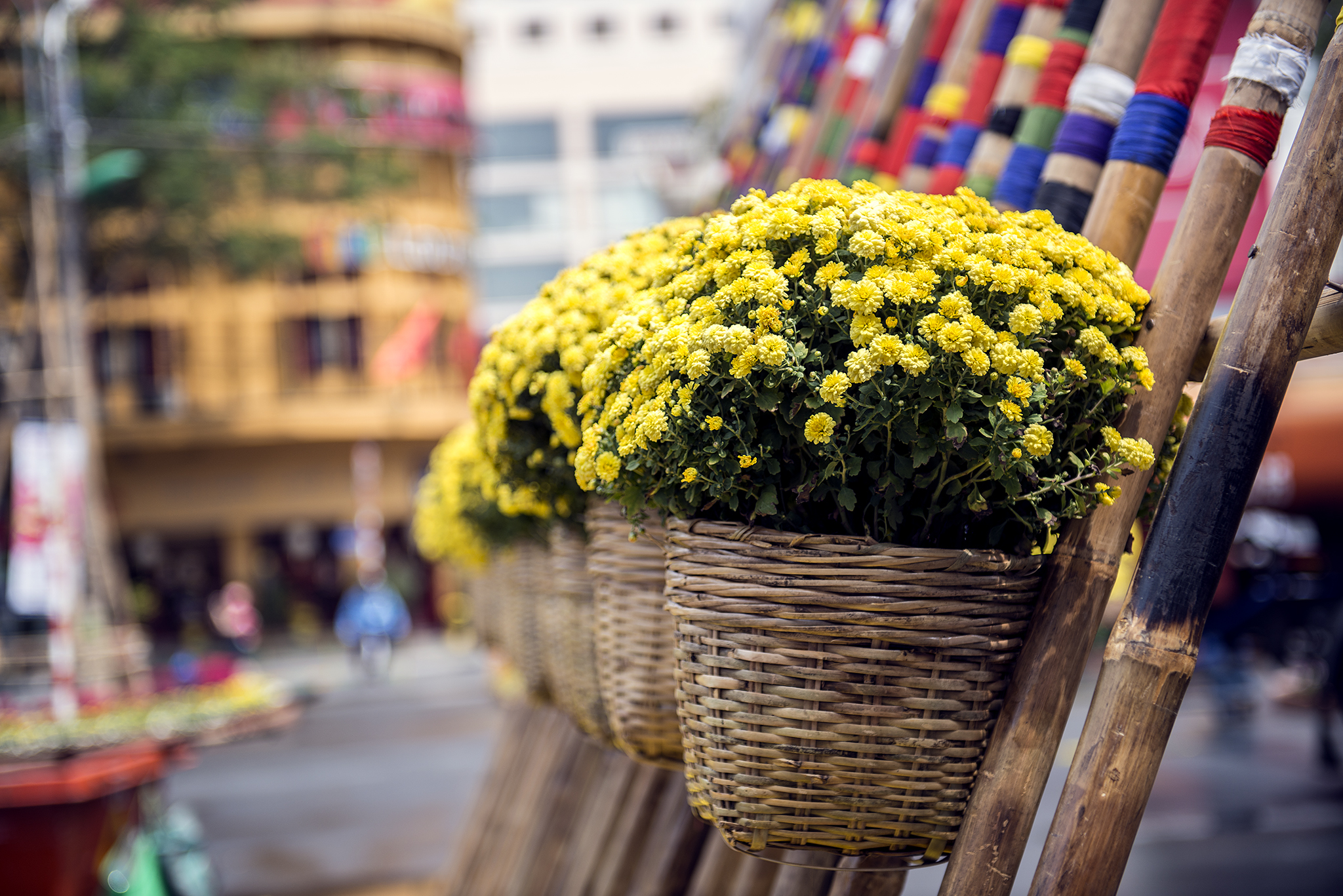 Weaved baskets of yellow flowers attached to tilted bamboo sticks