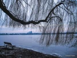 Winter Frozen Alster Lake