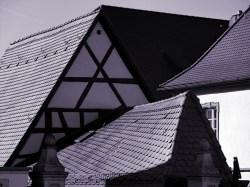 Struktur (Sommerhausen), 2011