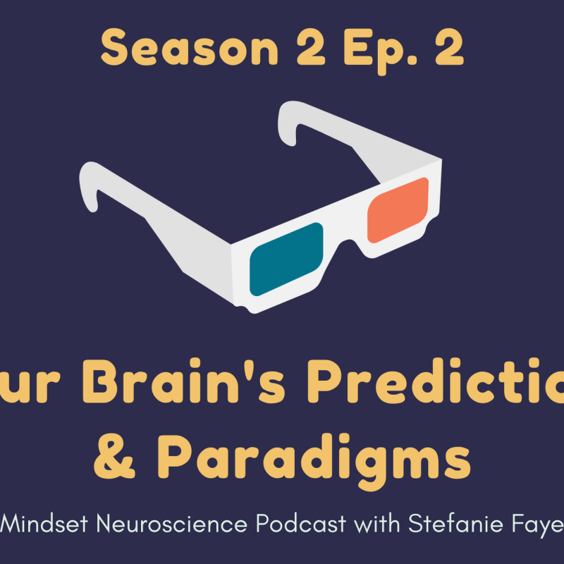 your brain's predictions and paradigms