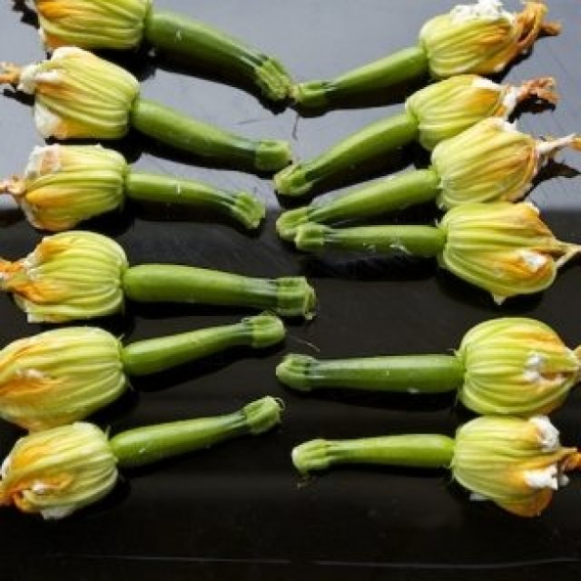 Lady Holiday's Stuffed Squash Blossoms