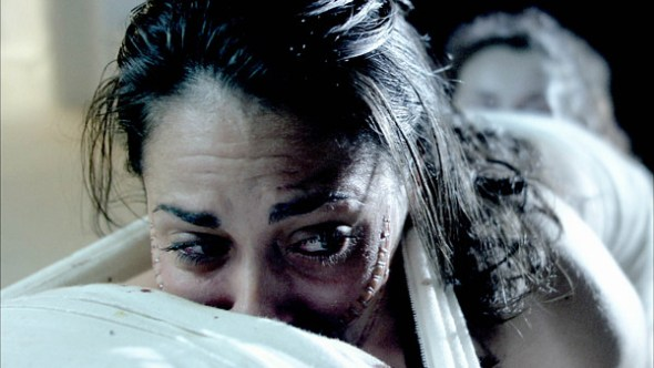 The Human Centipede (film review) | stefan poag