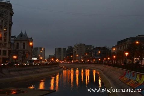 Dâmbovița în București