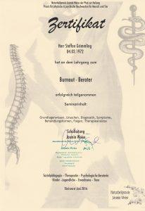 Zertifikat zum Burnout-Berater
