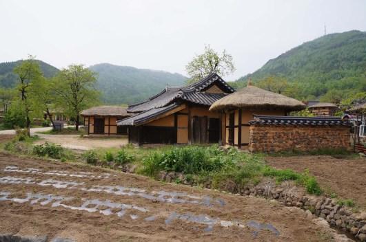 Wangkog2