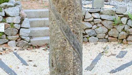 Quellstein – Spotted Blue column rund