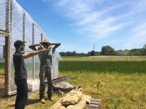Black Dirt Farm in Preston, MD