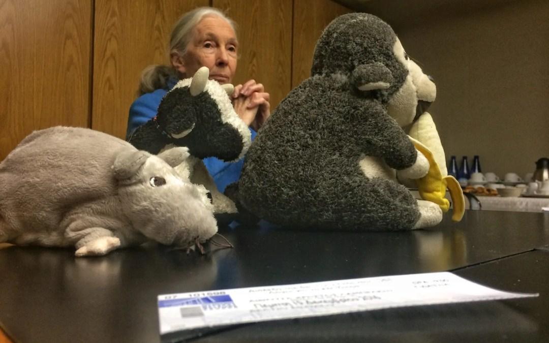 Τι έμαθα από την Jane Goodall