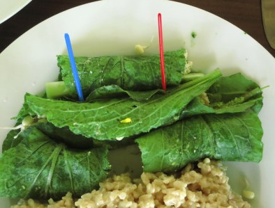 Borage wraps (including: borage leaves, garden and wood sorrels, pesto)