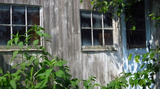 Shed window - Before