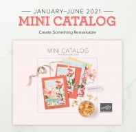 Oh how I love a new Stampin' Up! catalog!