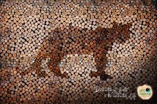 pro-natura-wolf-eagle-jaguar-print-366781-adeevee