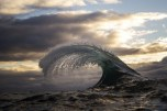 The Claw - Ray Collins