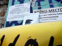 dzyob-packaging-5