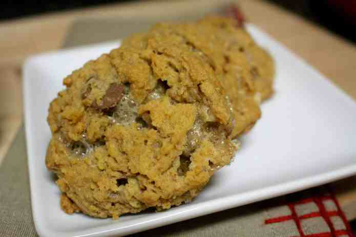 Campfire Cookies - 23