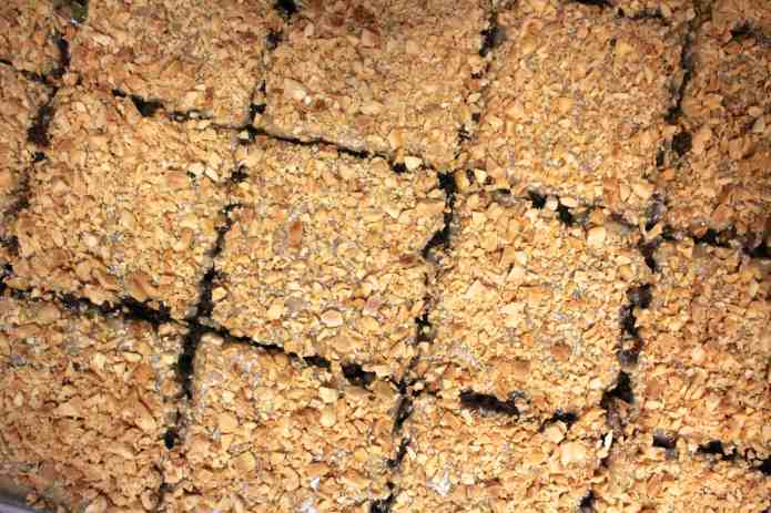 Chocolate Texas Sheet Cake - 21