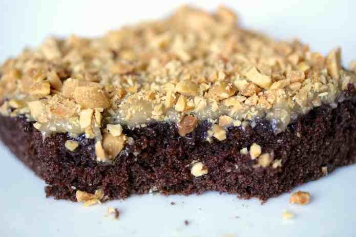 Chocolate Texas Sheet Cake - 26