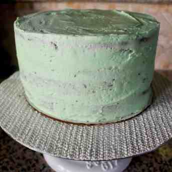 Grasshopper Cake - 30.2