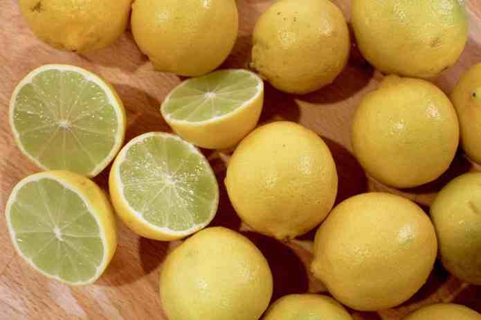 Lemon Lemon Loaf - 23.jpg