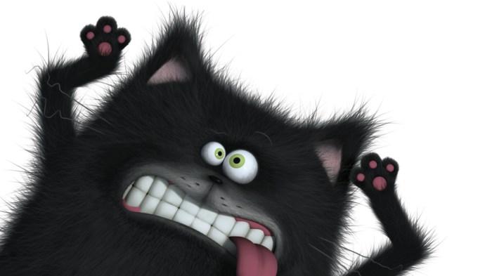 Illustration de Splat le chat, Rob Scotton