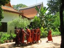 stellycious-cambodia-28