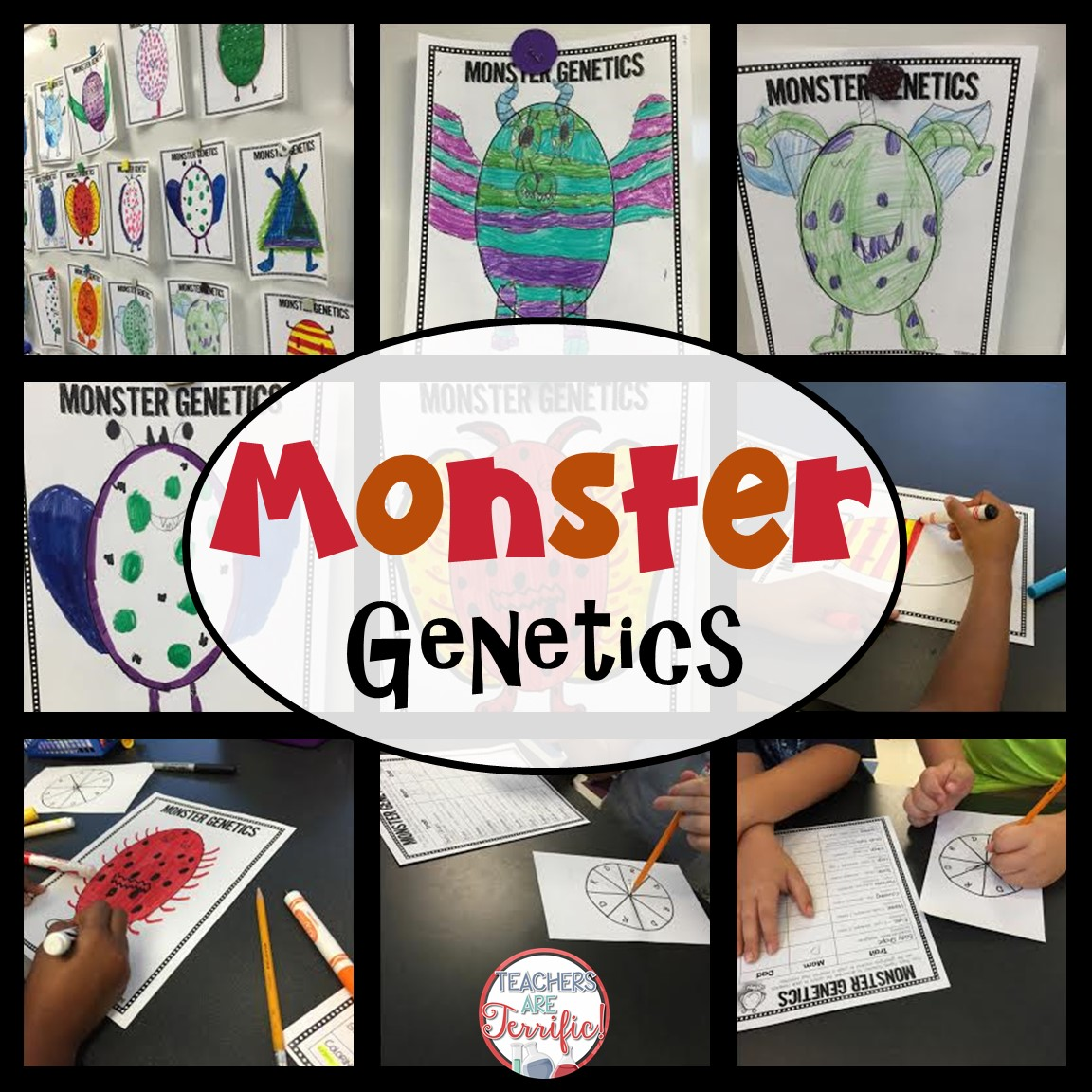 Genetics in the STEM Lab!