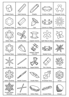 Types of Snowflakes