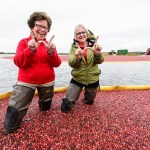 Wisconsin: No.1 cranberry producer in the world
