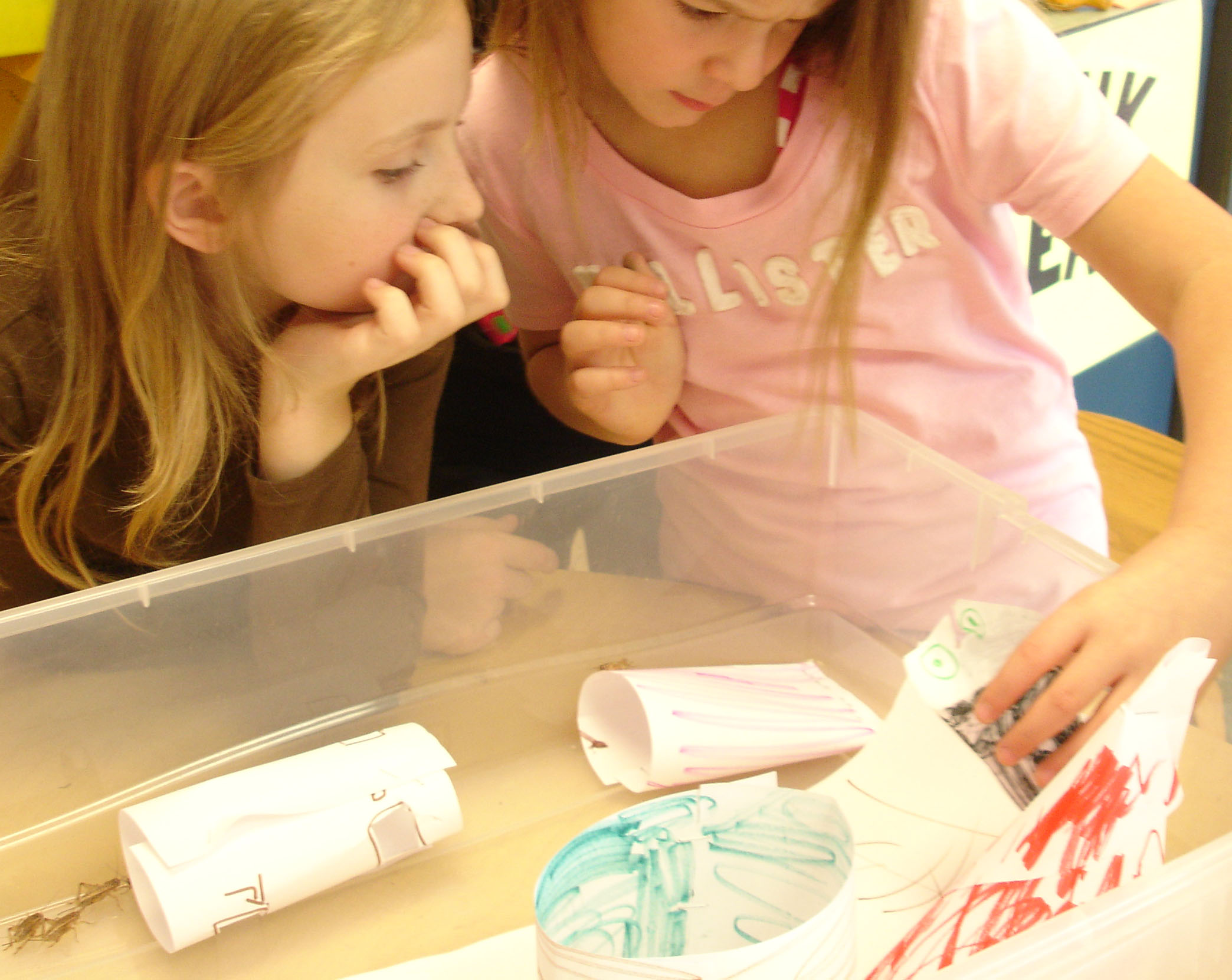 Crickets Observing Predicting Testing And More Steam