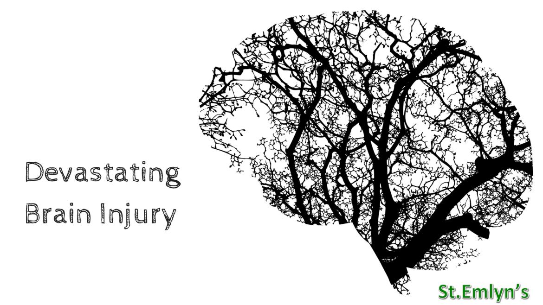 DBI devaststing brain injury stemlyns