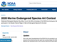 NOAA Marine Endangered Species Art Contest