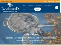 Loggerhead MarineLife Center Live and Recorded Webinars