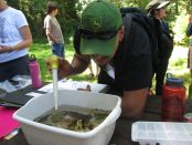 Teachers engage in watershed field experiences in OCEP workshops