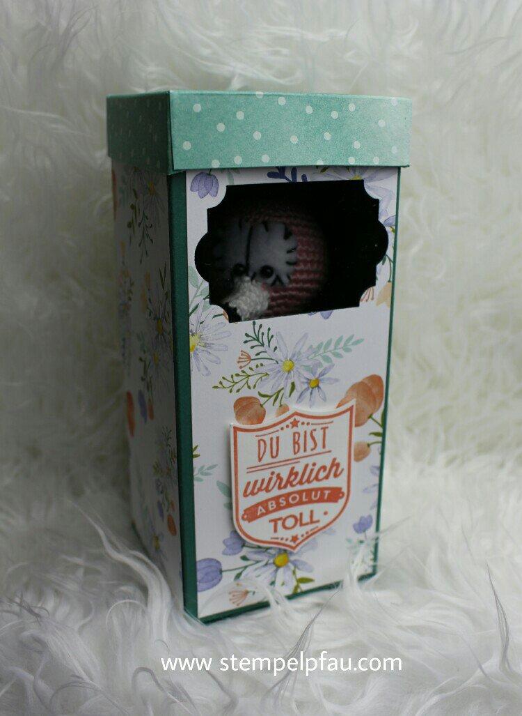 GeschenkBox mit Sichtfenster. Gestaltet mit den Produkten von Stampin' Up!