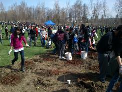 lots of volunteers