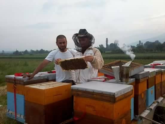 Град на Пчелите