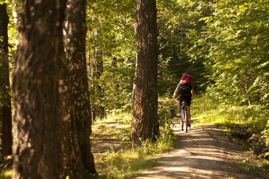 Куда поехать на велосипеде в Подмосковье