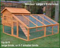 chicken-coop-and-pen
