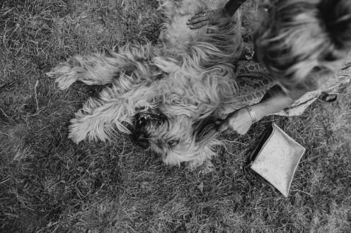 sula-oli-wedding-2018-stephanie-green-photography-black-and-white-272