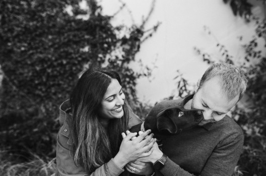 stephanie-green-weddings-puppy-portrait-ryan-jyothi-chocolate-lab-dog-pawtraits-walthamstow-london-64