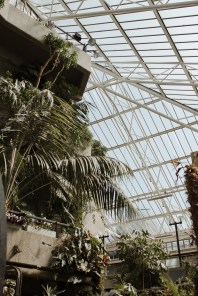 stephanie-green-weddings-barbican-conservatory-wedding-london-architecture-lover-172