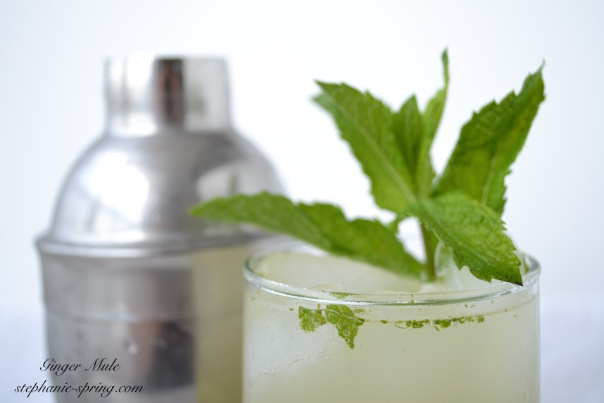 Ginger Mule Recipe at: stephanie-spring.com
