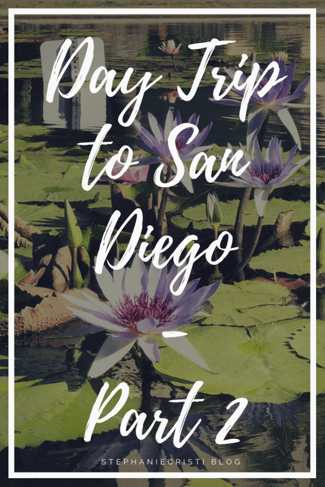 StephanieCristi shares her second day trip to San Diego of four parts in the series. If you're planning a trip to SD, be sure to check out these sights!