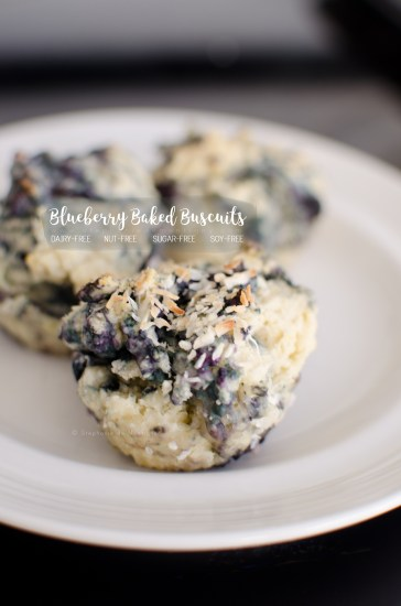 Blueberry Baked Biscuits: Sugar-Free, Dairy-Free & Nut-Free