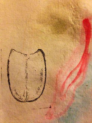 Ink, watercolor