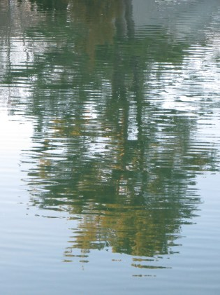The view from above/Is reflected and wavers/In water below