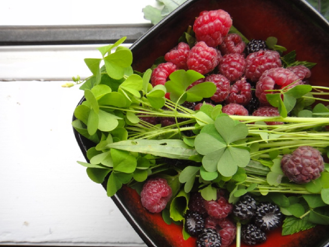 raspberries 1080