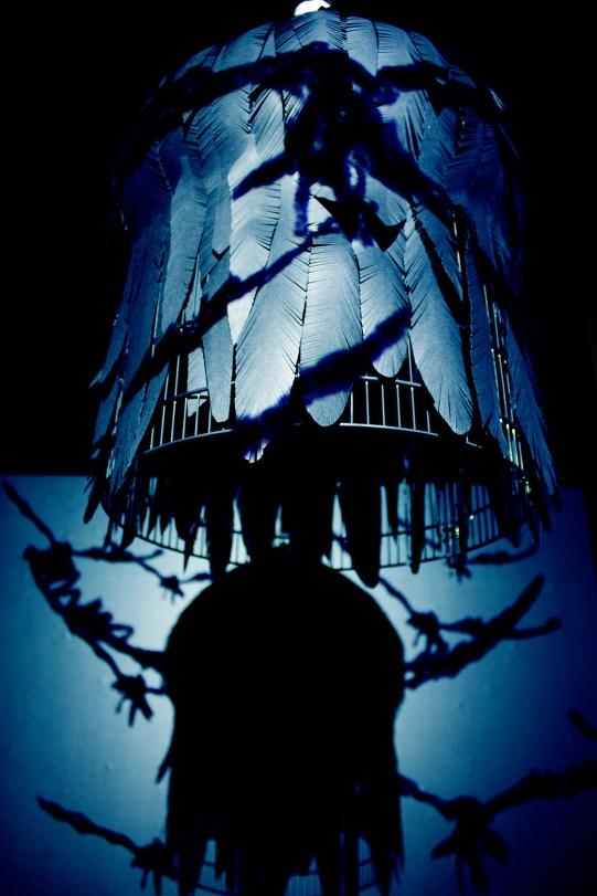 cage-noire-4