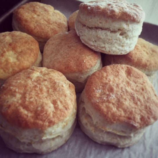 Biscuits glam insta
